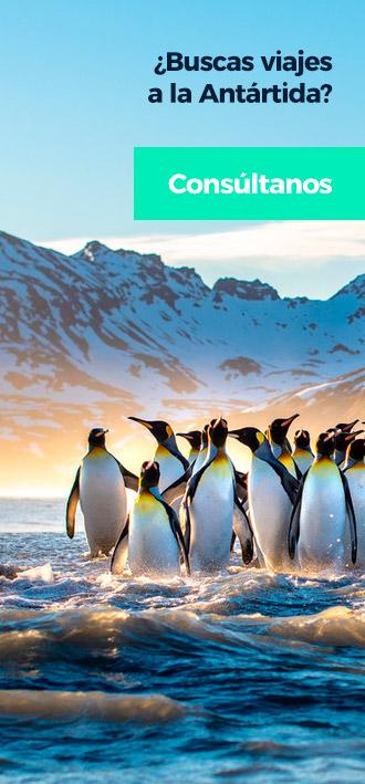 Viajes antártida