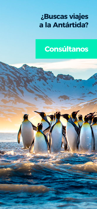 Buscas viajar a la Antártida?